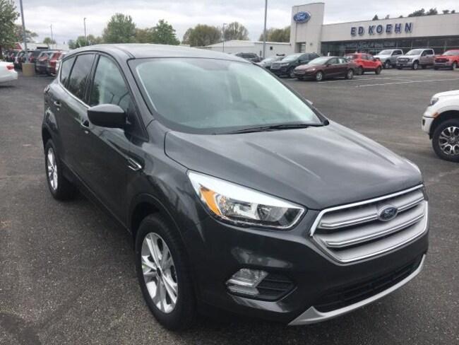 New 2019 Ford Escape SE SUV For Sale Greenville, MI