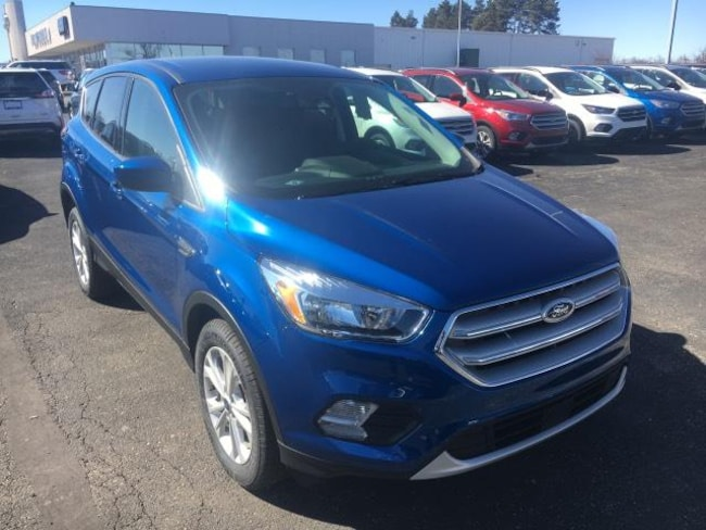 New 2019 Ford Escape SE SUV For Sale Greenville, MI