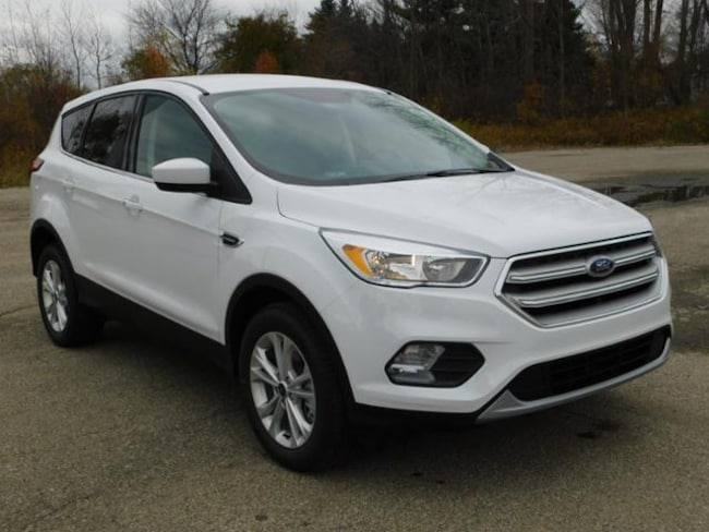 New 2019 Ford Escape SE SUV For sale/lease Wayland, MI