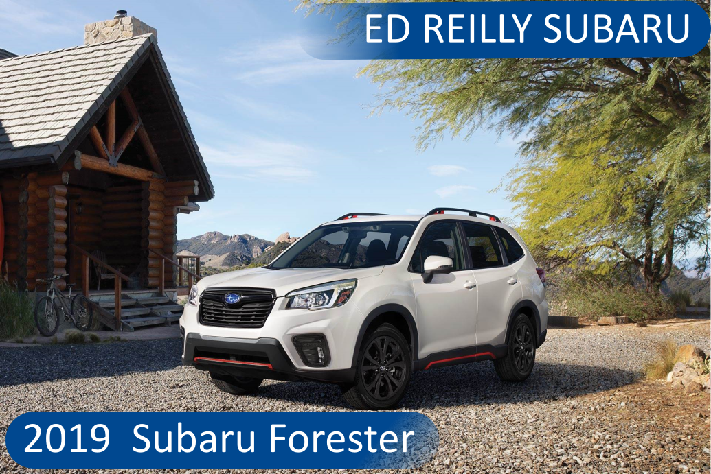 Subaru Forester Accessories Ed Reilly Subaru