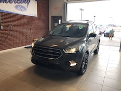 Used Vehicles for sale 2017 Ford Escape SE SUV 1FMCU9GD2HUA11175 in Springville, NY