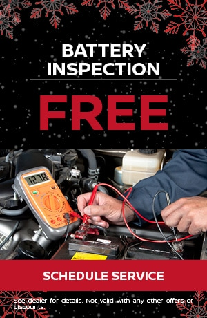 Free Battery Inspection