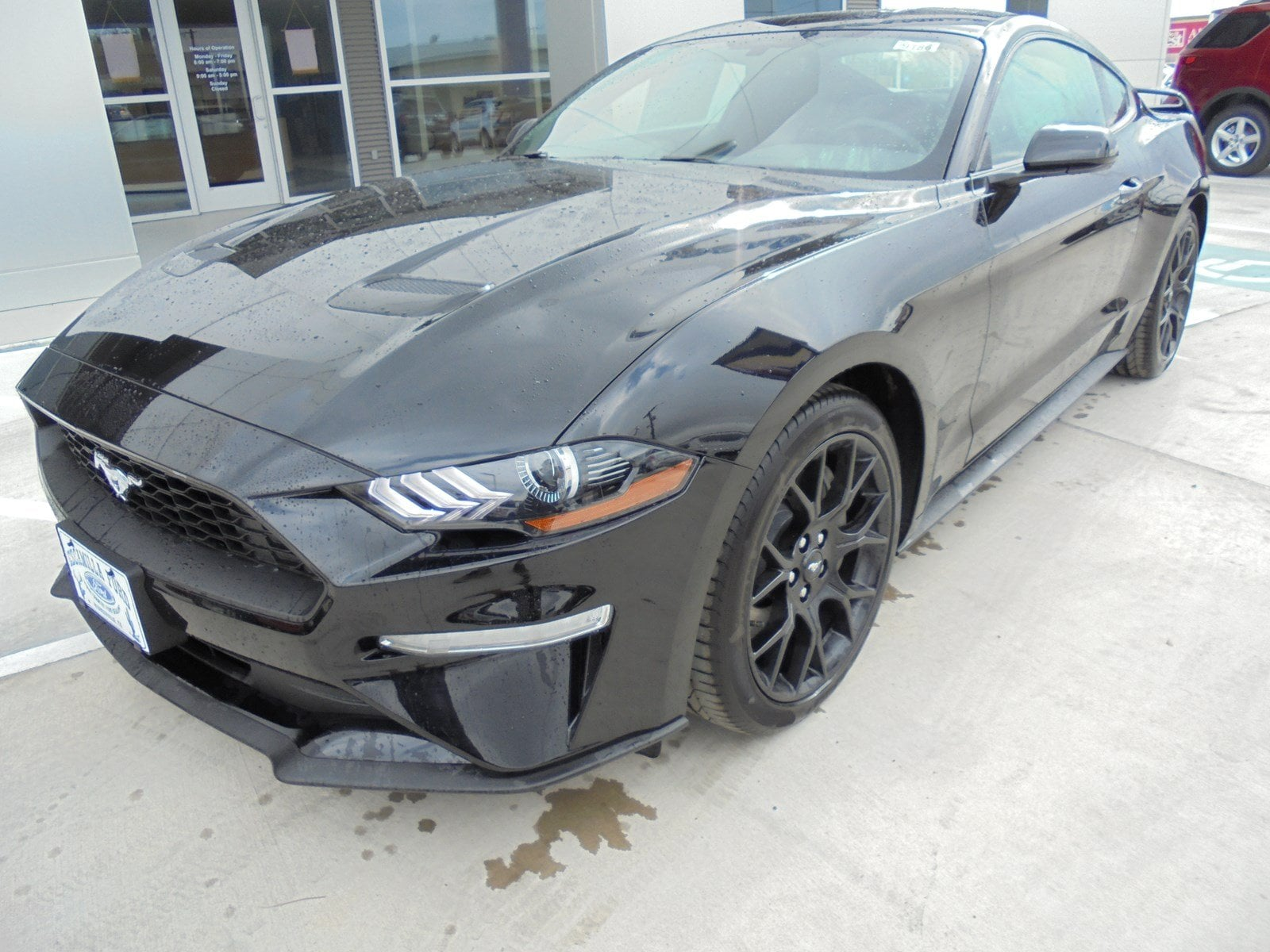 Cars For Sale Laredo Tx >> New Ford Mustang for Sale in Laredo, TX - CarGurus