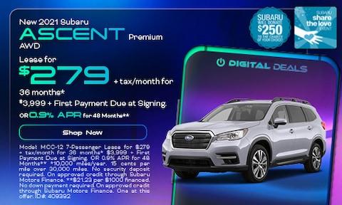 November 2021 Ascent Special
