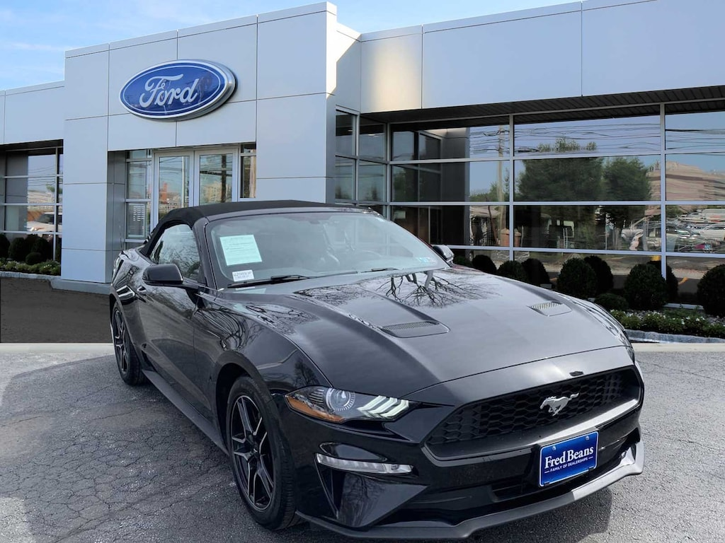 Certified used 2019 ford mustang ecoboost premium for sale in doylestown pa serving new britain pa philadelphia chalfont 1fatp8uhxk5104157