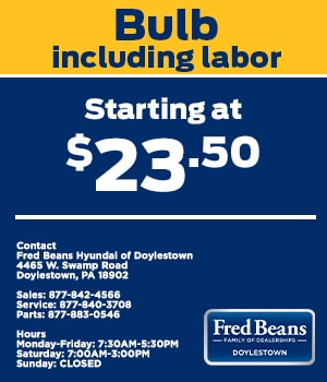 Bulb Including Labor Starting at $23.50