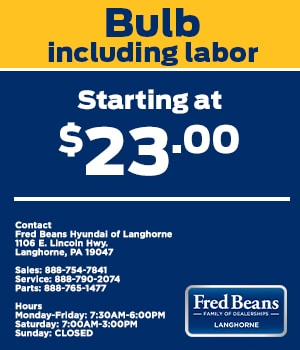 Bulb Including Labor Starting at $23.00