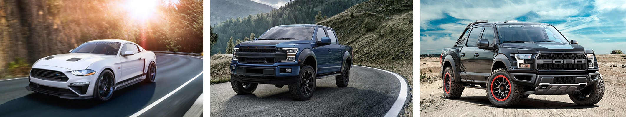 Ford Performance and Off-Road Vehicles for Sale in Williamston