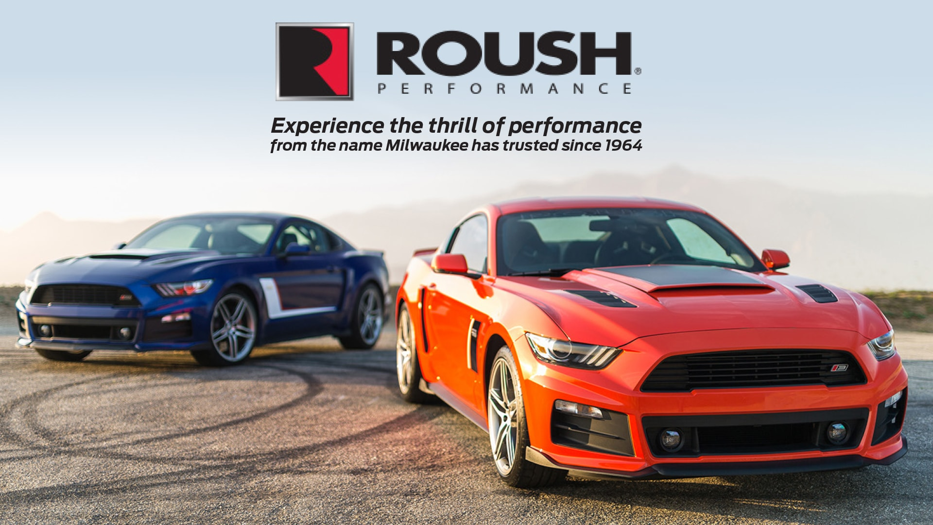 Roush Performance Cars and Trucks For Sale at Feyer Ford