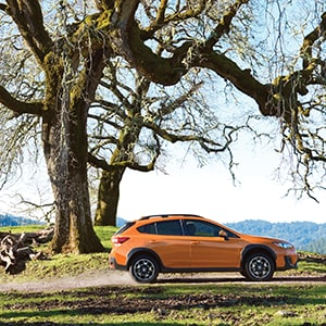 2019 Subaru Crosstrek in Sunshine Orange  exploring off-road - Findlay Subaru Prescott, Arizona