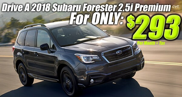 18-0604-special-S38884-Forester.png