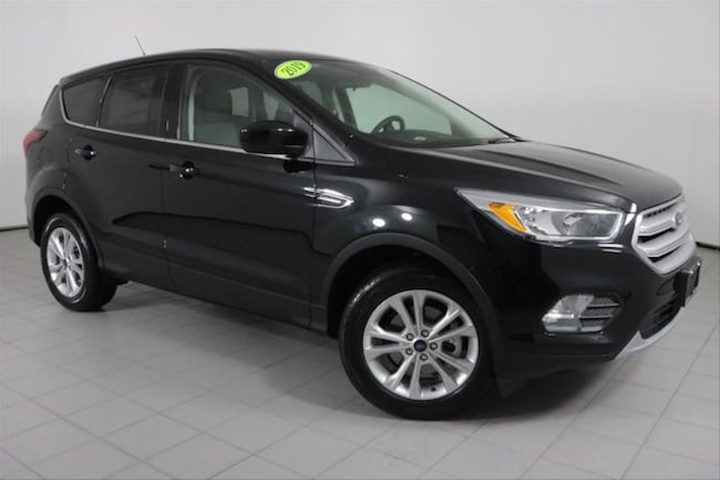 New 2019 Ford Escape SE SUV in Peoria, IL
