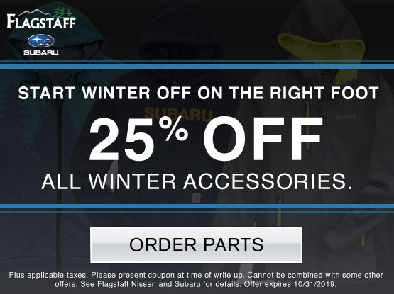 25% OFF All Winter Accessories