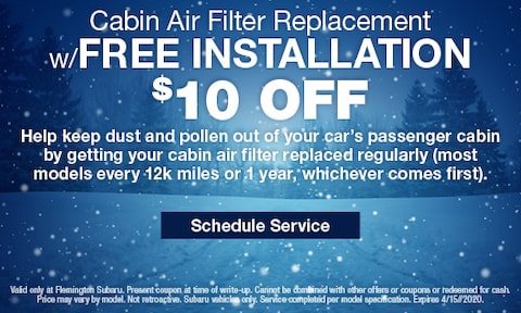 Cabin Air Filter Replacement Special