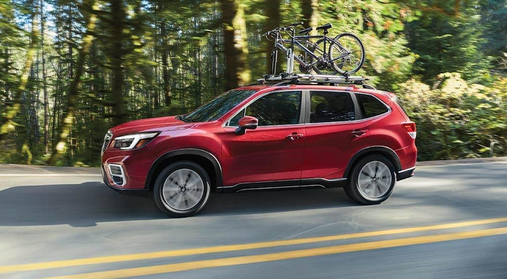 A red 2021 Subaru Forester is driving past trees with bikes on the roof.