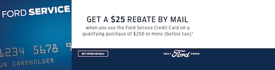 Thief River Ford Inc Ford Dealership In Thief River Falls Mn