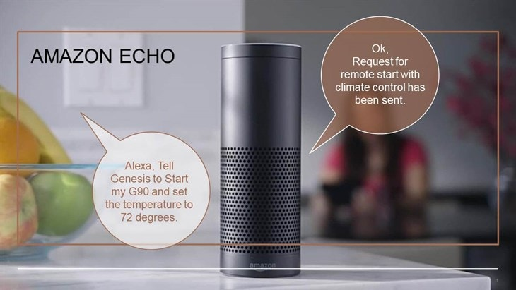 Example of Alexa dialog with Genesis