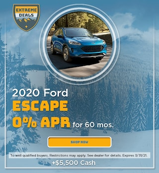 2020 Ford Escape - January 2021