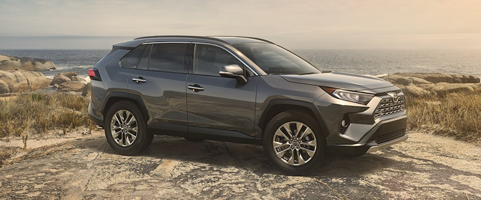 A silver 2019 Toyota RAV4 parked on a cliff