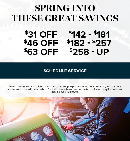 SPRING INTO THESE GREAT SAVINGS