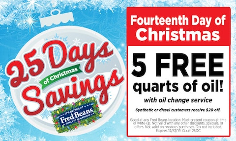 Fourteenth Day of Christmas
