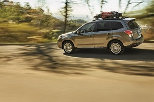 Subaru Forester Off Road >> Tips For Off Roading In Your Subaru Forester Fred Beans Subaru