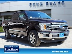 New 2019 Ford F-150 XLT Truck SuperCrew Cab in West Chester PA
