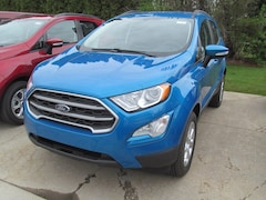New 2019 Ford EcoSport SE 4 Wheel Drive SE 4WD for Sale in Casco MI