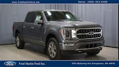 Buy a 2021 Ford F-150 Platinum Truck in Youngstown, OH
