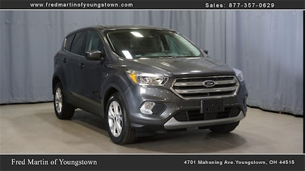 Buy a 2019 Ford Escape SE SUV in Youngstown, OH