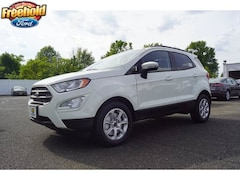 New 2019 Ford EcoSport SE Crossover near Jackson Township