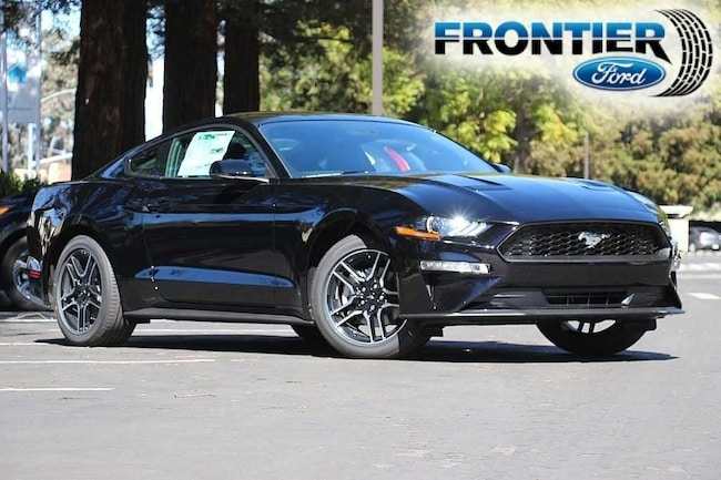 2019 Ford Mustang Coupe 1FA6P8THXK5169590