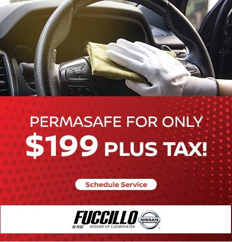 PermaSafe for Only $199 plus tax!
