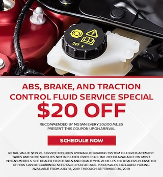 ABS, Brake, and Traction Control Fluid Service SPECIAL