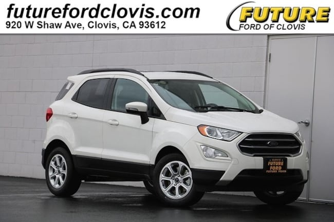 New 2019 Ford EcoSport For Sale at Future Automotive | VIN
