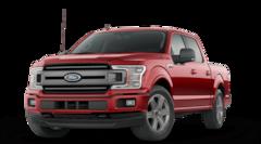 New 2020 Ford F-150 XLT Truck in Winamac, IN