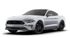 New 2020 Ford Mustang Ecoboost Coupe near Jackson Township