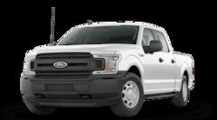 2020 Ford F-150 XL XL 4WD SuperCrew 6.5 Box in Jasper, IN