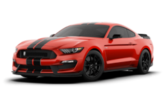 New 2020 Ford Mustang Shelby GT350 Coupe Dandridge, TN