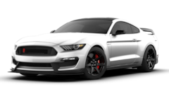 2019 Ford Mustang Shelby GT350R Coupe