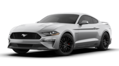2019 Ford Mustang GT Premium Coupe in Alvin, TX