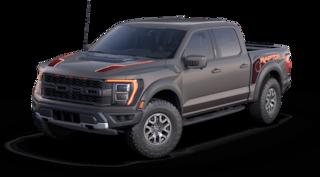 2021 Ford F-150 Raptor Pickup Truck