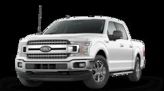 New 2020 Ford F-150 XLT Truck 40021F in Hayward, WI