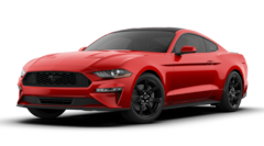 New 2019 Ford Mustang Ecoboost Coupe 1FA6P8TH2K5168658 in Tyler, TX