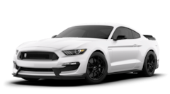 2020 Ford Mustang Shelby GT350 2dr Car