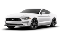 new  2020 Ford Mustang Ecoboost Fastback Coupe 1FA6P8TH3L5174339 3901Y for sale in Philadelphia