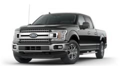 New 2020 Ford F-150 XLT Truck SuperCrew Cab for sale in North Branch, MN