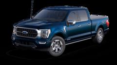 2021 Ford F-150 Platinum Truck 1FTFW1ED9MFA53485