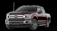 New 2019 Ford F-150 XLT Truck Pottstown