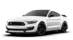 2020 Ford Mustang Shelby GT350 Coupe for sale in Montevideo, MN